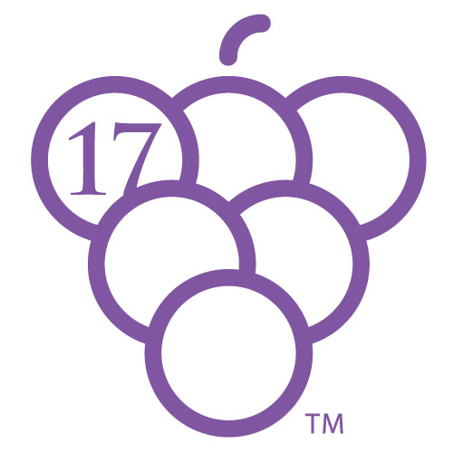 17 Grapes Business Consulting