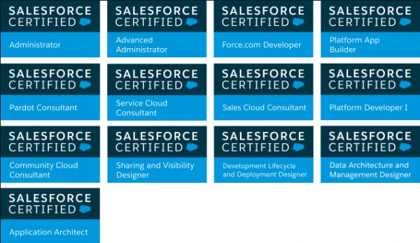 17 Grapes Salesforce Certifications